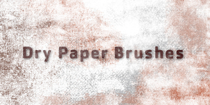 5 Dry Paper Brushes