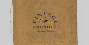 Vintage Thrift Store Brushes